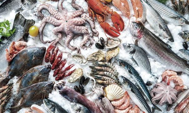 pescado-marisco-907x543